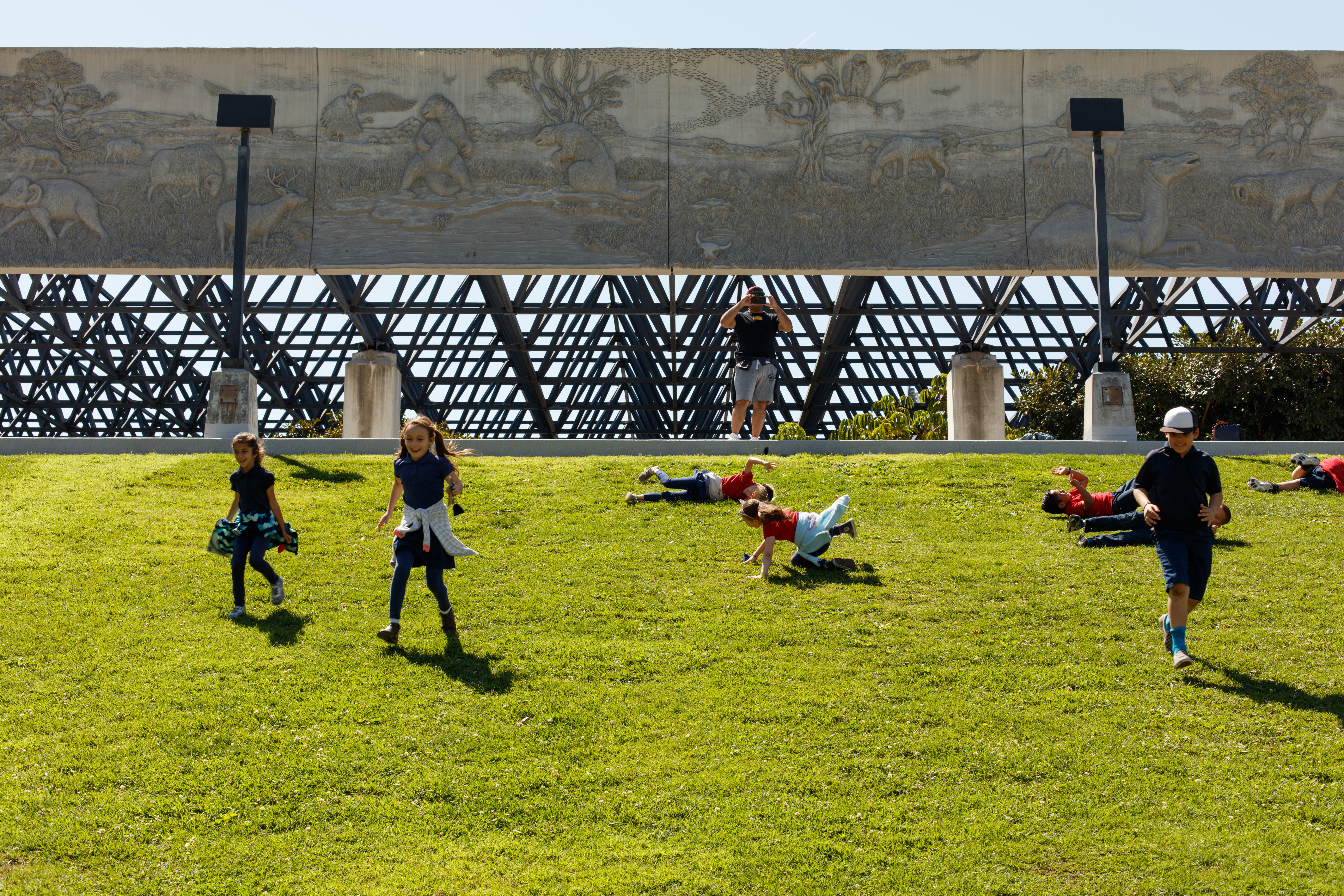 Kids rolling down hill at La Brea Tar Pits