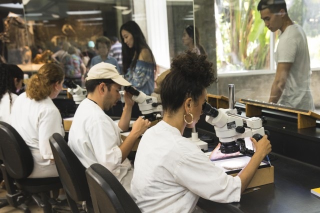field school students using microscopes in the fossil lab tar pits