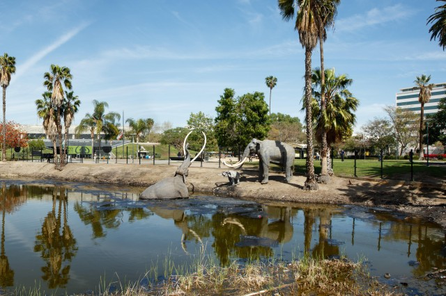 Exterior shot of La Brea Tar Pits and Lake Pit