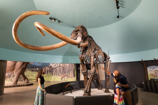 Masked Family With Mammoth