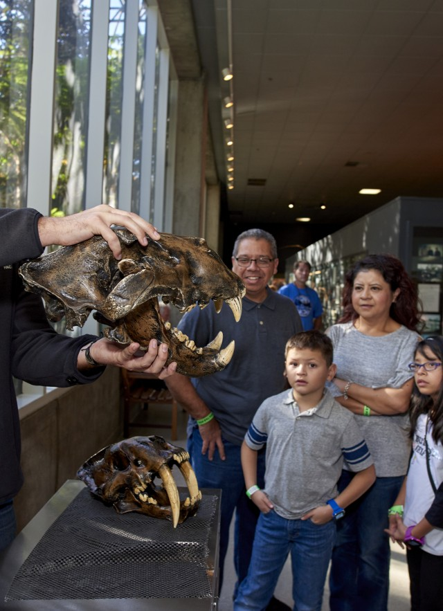 volunteer holding skull in front of guests