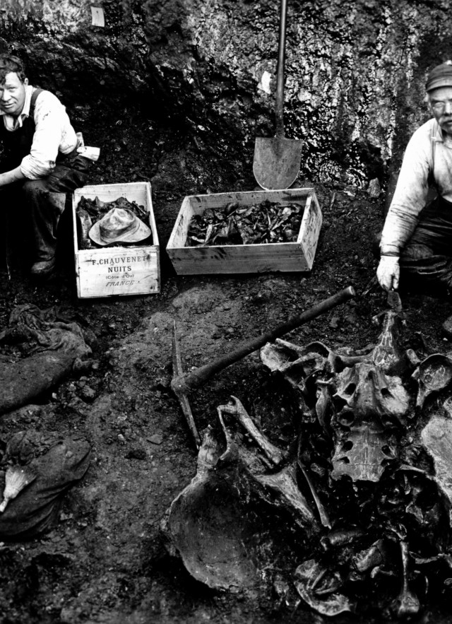 black and white image of early la brea tar pits excavation