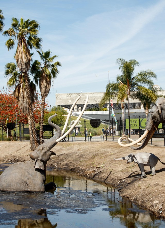 lake pit museum in background la brea tar pits