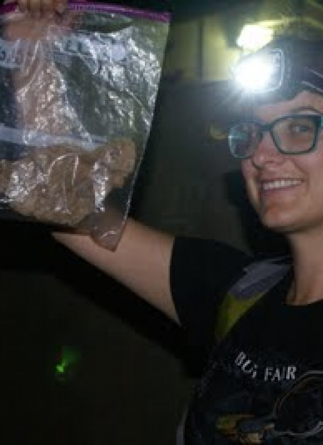 Bag, Gecko,Headlight, Community science