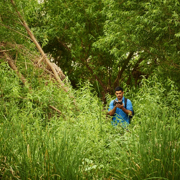 Miguel walking through field