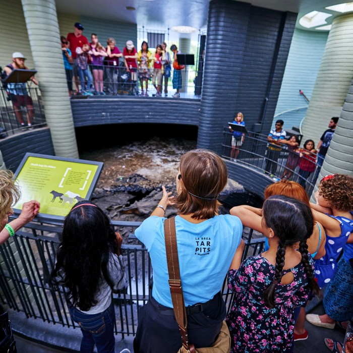 observation pit at the tar pits