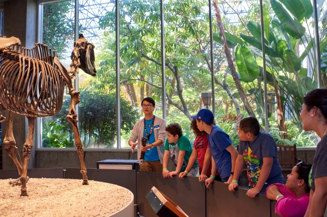 kids on a tour in front of smilodon skeleton at the tar pits