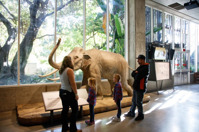 family kids interacting mammoths and mastodons exhibit la brea tar pits