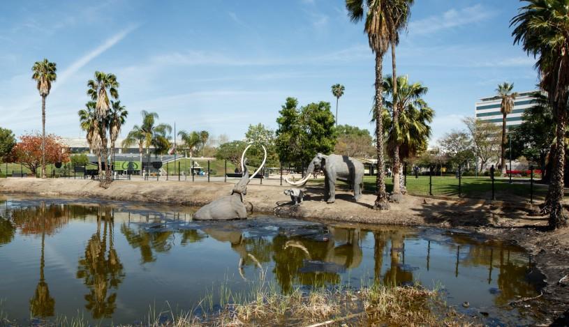 Exterior shot of La Brea Tar Pits and Lake Pit