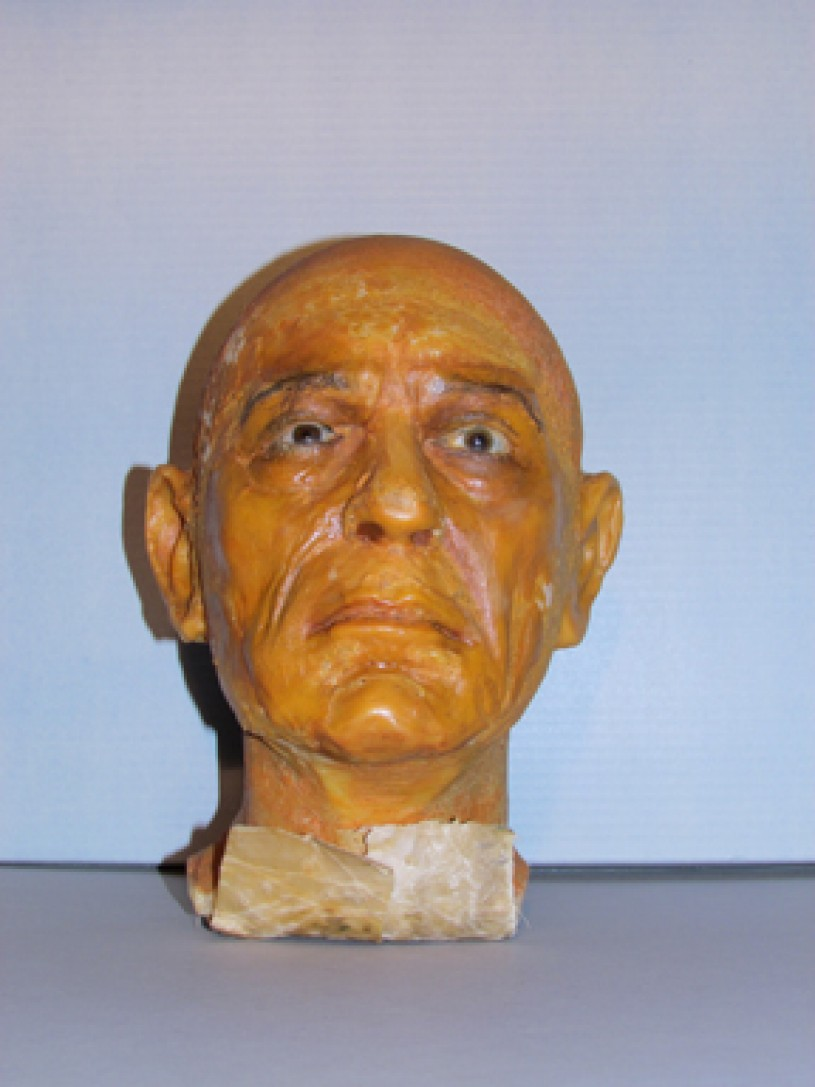 Chaney Wax Head Tilted Front View