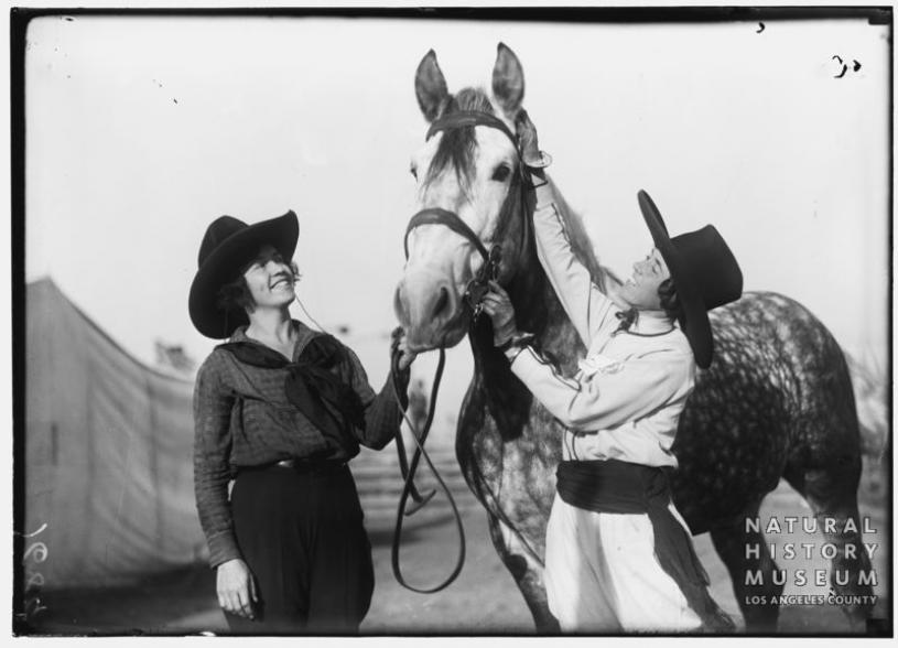 vintage horse image