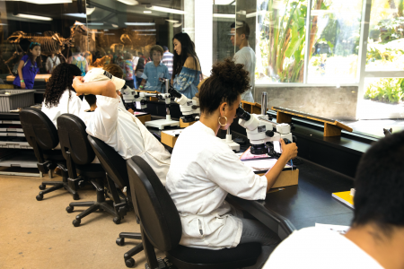 Analisa Rivera, a UCLA senior, examining microfossils in the Fossil Lab.