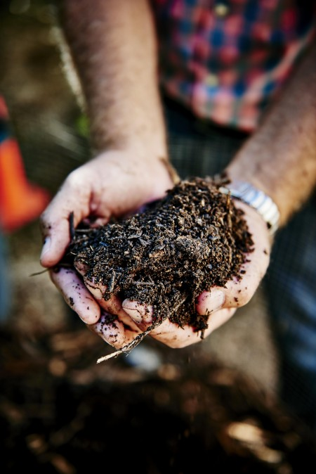hands holding soil and compost
