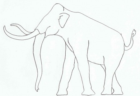 Outline of Columbian Mammoth in profile